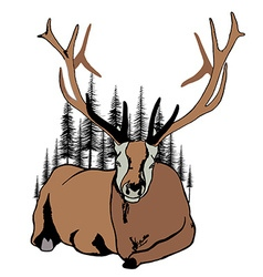 Lying deer and fir trees around him vector image