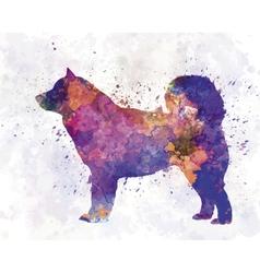 Alaskan malamute 01 in watercolor vector