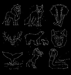 Collection of hand draw animals constellation on vector