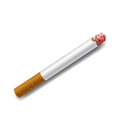 smoldering cigarette on a white background vector image vector image