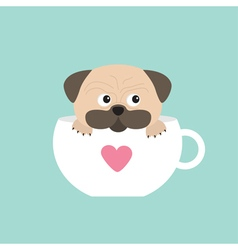 Pug dog mops paw sitting in big cup with heart vector