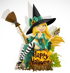 Beautiful young witch with a book and broom vector image
