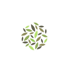 abstract leaf organic logo vector image