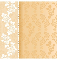 Lace beige square vector