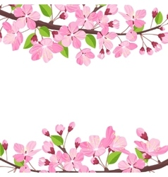 Blossoming cherry spring background apple tree of vector