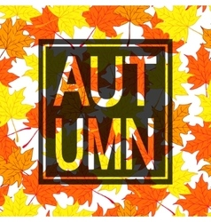 Autumn leaves background with black border vector