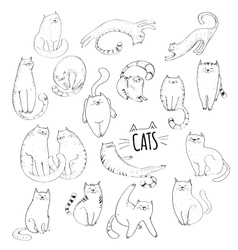 Cute cats hand drawn collection vector