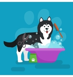 Dog hair hygiene set pet vector