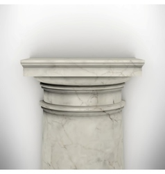 column isolated on white wall vector image