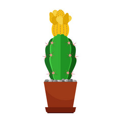 cactus with yellow flower vector image vector image