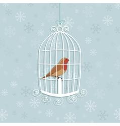 Christmas robin vector