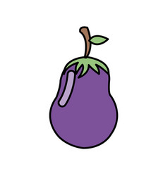colorful vegetable eggplant icon vector image vector image