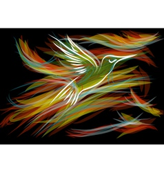 Hummingbirds vector