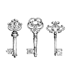 Vintage medieval sketched key skeletons vector