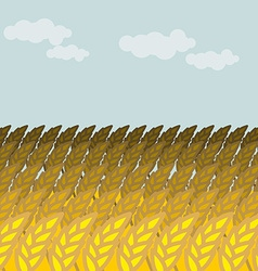 Field of wheat grain field and blue sky rye spikes vector