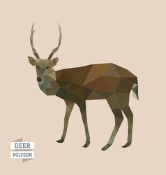 Deer polygon vector