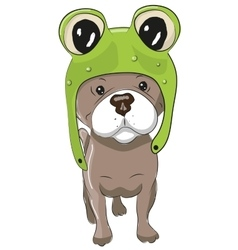 Dog in froggy hat vector