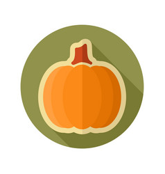 pumpkin flat icon vegetable vector image vector image