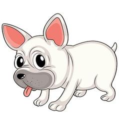 A white bulldog vector image