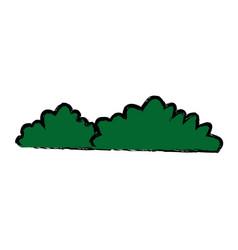 bush natural forest garden image vector image vector image