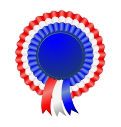USA patriotic award ribbon rosettes vector image
