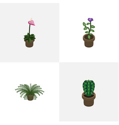 Isometric houseplant set of flower plant grower vector
