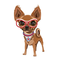 little doggy in glasses vector image vector image