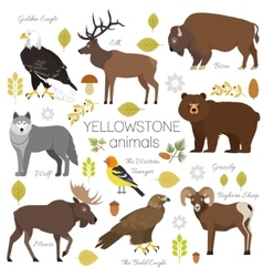 Yellowstone national park animals set grizzly vector