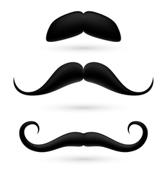 A set of three moustache vector image