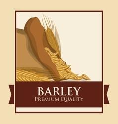 Barley icon design vector