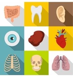 Internal organs icons set flat style vector