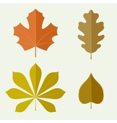 Autumn leaves in flat style vector