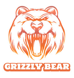 colorful grizzly bear sketch vector image vector image