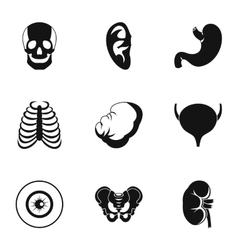 Human organs icons set simple style vector