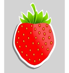 Strawberry Can be used as sticker vector image