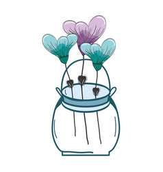 Botany flowers with petals in the jar decoration vector
