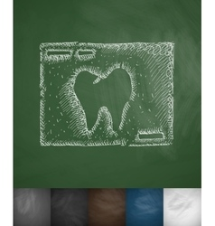 picture tooth icon vector image vector image