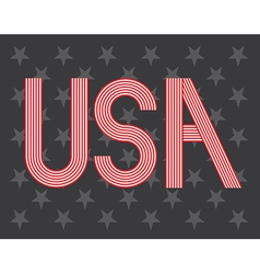 USA symbol vector image vector image