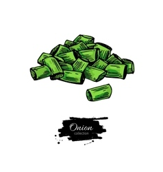 Green spring onion sliced heap hand drawn vector