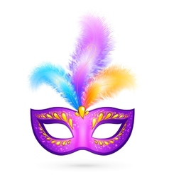 Violet carnival mask with feathers vector