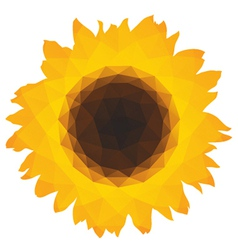 Sunflower icon with triangular polygons vector