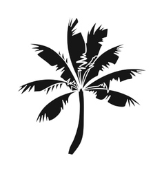 Palm tree icon in black style isolated on white vector image