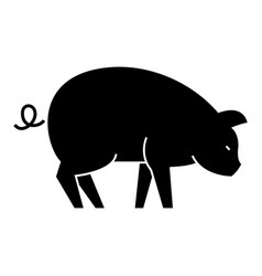 pig icon sign on isolate vector image