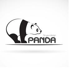 image of an panda design vector image