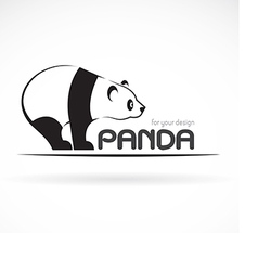 Image of an panda design vector