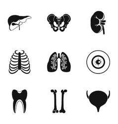 Bodies icons set simple style vector image vector image