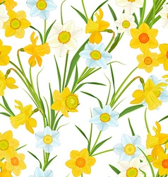 seamless texture with blossom of daffodils vector image