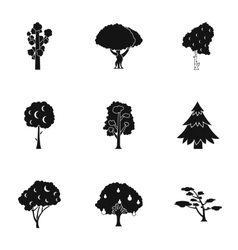 Arboreal plant icons set simple style vector