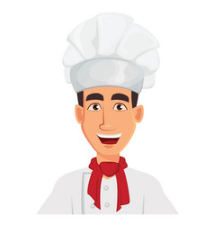 face expression of chef man happy vector image vector image