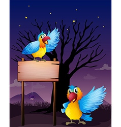 Two parrots near an empty board vector image